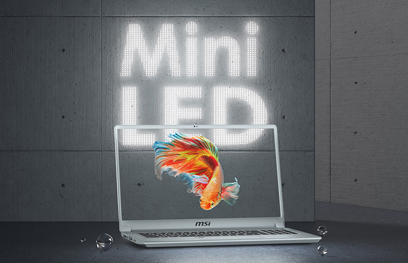 See How Bright Mini LED Display is! Discover Secrets of MSI Creator 17, the Best Laptop for Creators