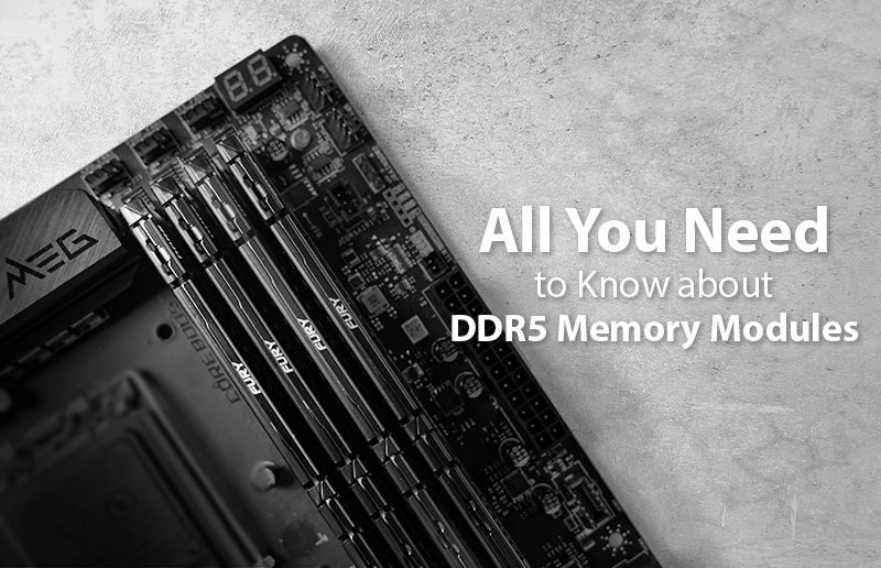 All You Need to Know about DDR5 Memory Modules