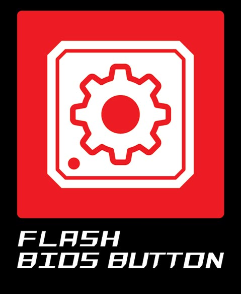 Flash BIOS Button