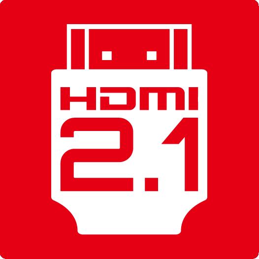 MSI HDMI 2.1