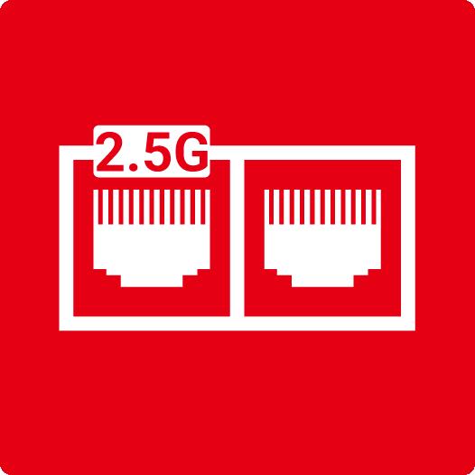MSI 2.5G Plus Gigabit LAN