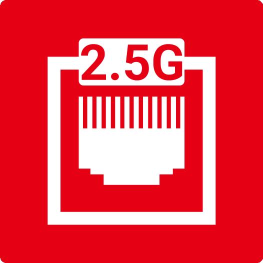 2.5G LAN