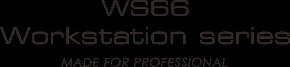 ws66 slogan
