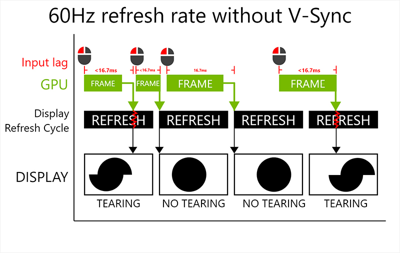 300Hz display