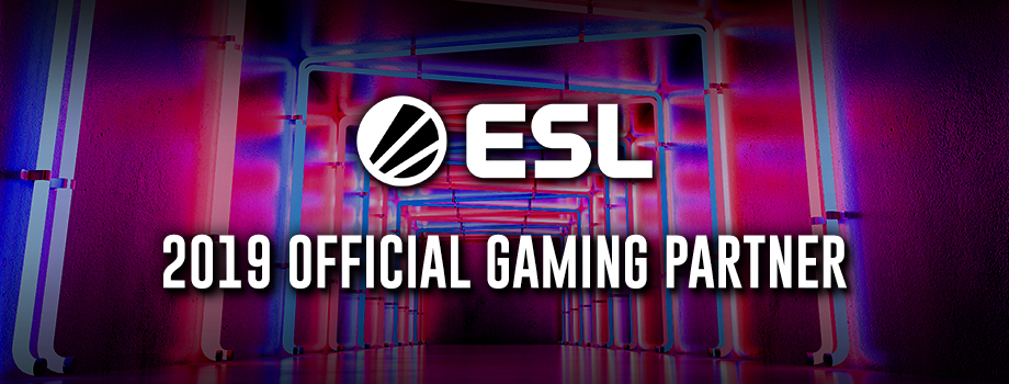 2019 OFFICIAL GAMING PARTNER