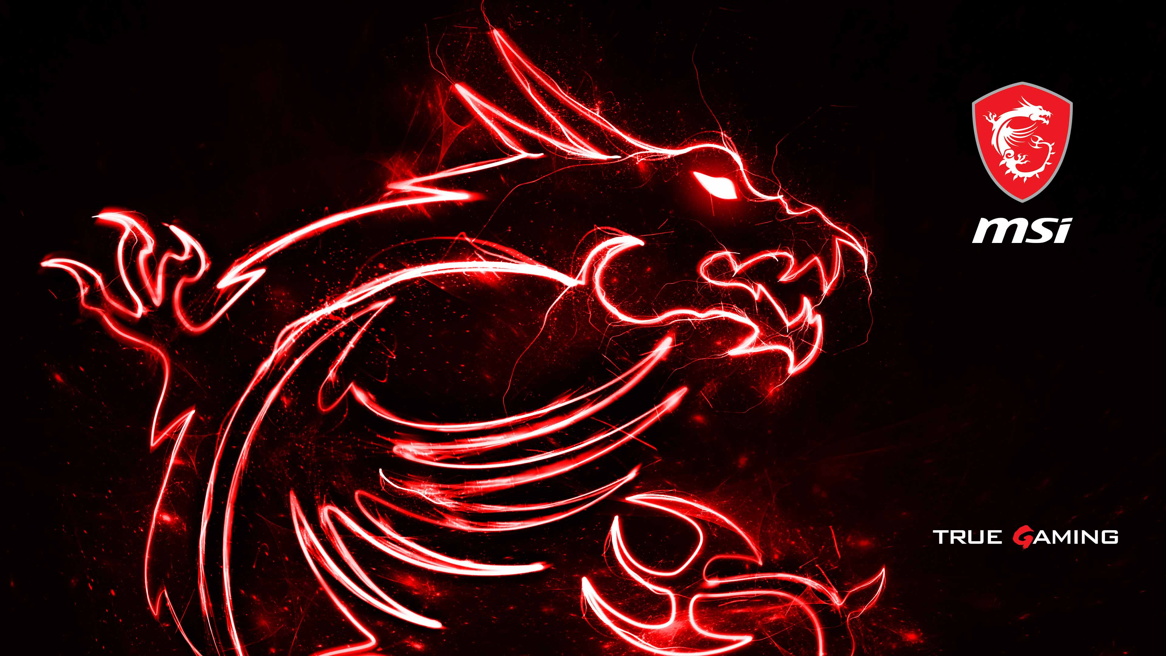 Wallpaper  MSI Global