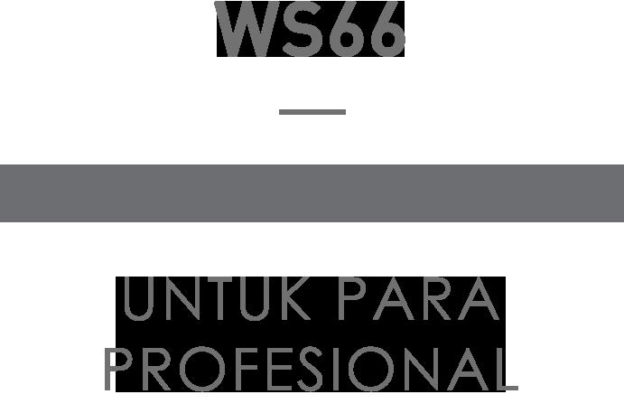 msi ws66 title