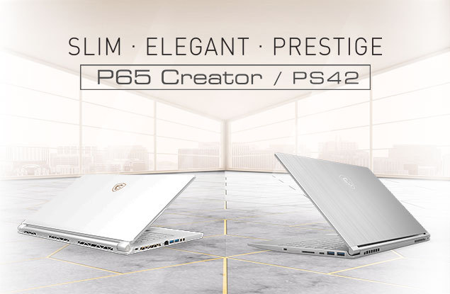 PS42 P65
