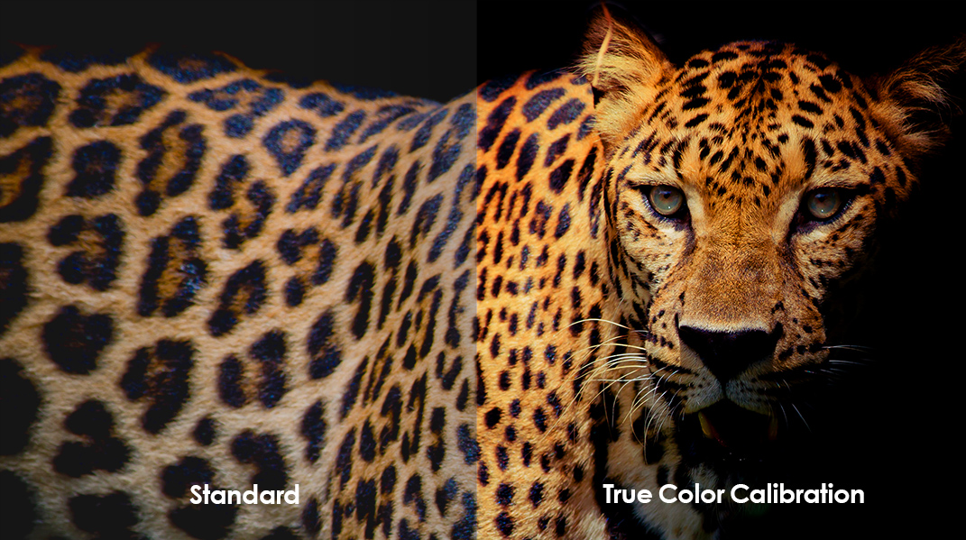 True Color Technology Comparison.